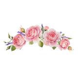 Watercolor rose vector omposition - 251804224
