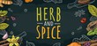 HERB and SPICE handwriting lettering. Set vector color engraving