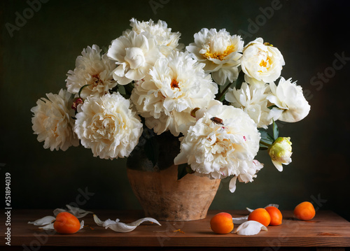 Still life with peonies and maybug © Marta Teron
