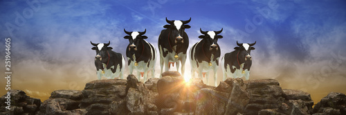 Cow at sunset. 3d rendering - 251964605