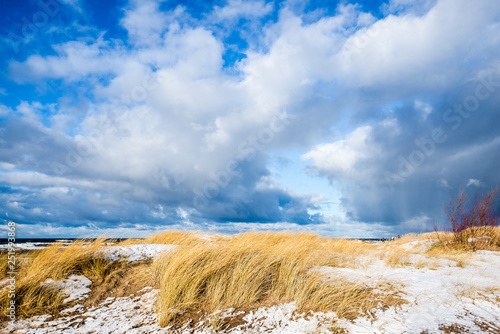obraz lub plakat Snow-covered seacoast on a sunny winter day. Cold stormy waves and clouds over the North sea, Netherlands