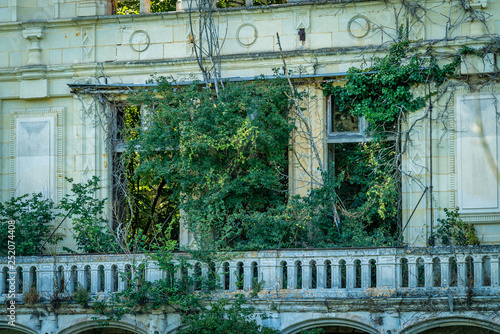 Vegetation in ruins, nature takes its right back