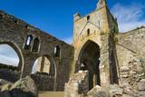 Abadia de Dunbrody en Irlanda