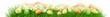 canvas print picture - Ostereier auf einer Wiese - Panorama