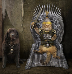 The cat king in knight armor with a sword sits on the iron throne in the old castle. The big black dog is near him.