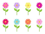 vector collection of colorful stylized daisy flowers