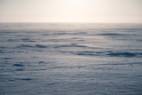 Winter landscape. The surface of the frozen sea. A little fog