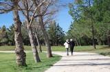 Deux vieux amis qui marchent ensemble sur un chemin