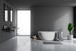 Gray bathroom interior, tub and sinks
