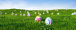 Leinwandbild Motiv Colorful easter eggs on meadow for easter as a panorama background header