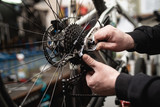 Bicycle mechanic in a workshop in the repair process.
