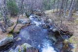 Peguera river, national park of Aigüestortes i Estany de Sant Maurici, Lérida, Catalonia, Spain