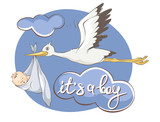 It's a boy -- card.  Vector illustration, Stork bears baby.