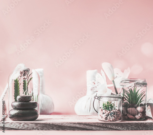 Beautiful spa setting background with steak of massage stones, succulent plants and wellness equipment on table at pastel pink wall. Healthy lifestyle , beauty, relaxing and spoiling concept