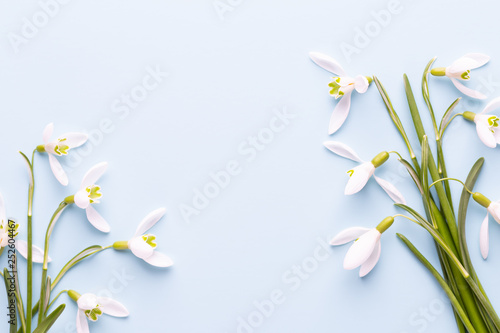 Leinwanddruck Bild Fresh snowdrops on blue background with place for text. Spring greeting card. Mother day. Flat lay.
