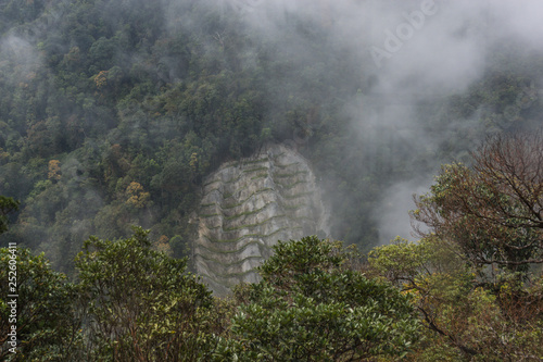 misty view of Ba Na hill vegetation and jungle as one ascends in a cable car
