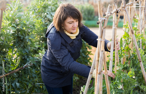 Young woman gardener with bamboo stick working with seedlings
