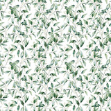 Watercolor seeded eucalyptus big seamless pattern. Hand painted eucalyptus branch and leaves isolated on white background. Floral illustration for design, print, fabric or background. - 252647633