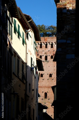 Lucca, Italy  - 252650007