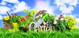 Fototapeta Miasto - Garten in der Natur Hintergrund banner  © drubig-photo