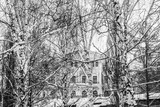 mansion in a winter birch grove above the overpass