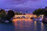 Fototapeta Paryż - Pont Neuf, Paris, France © neirfy