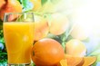 Orange Orangensaft Bio Frisch