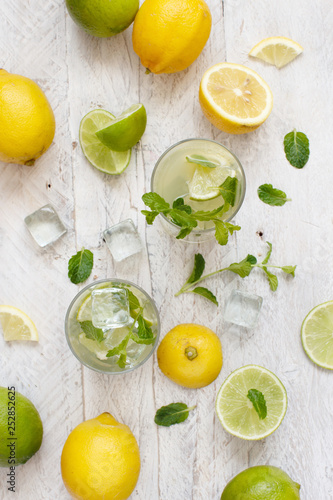 Homemade refreshing drink with lemon and lime juice and mint - 252852625