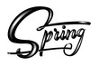 Hand drawn lettering Spring with shadow and highlights. Elegant modern handwritten calligraphy. Vector Ink illustration. Typography poster on white background. For cards, invitations, prints etc