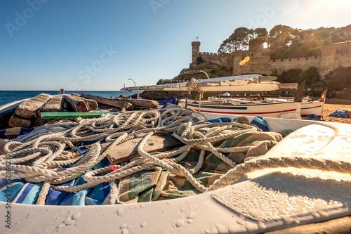 mata magnetyczna Tossa de Mar in Costa Brava in Catalonia Spain