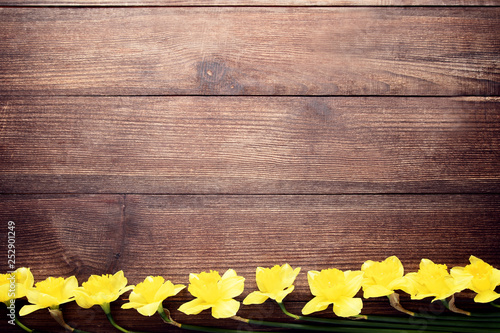 Yellow narcissus flowers on brown wooden table - 252901249