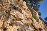 Fototapeta Kamienie - Huge natural rock with wild trees above © whitehoune
