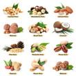 Leinwandbild Motiv Set of different delicious organic nuts on white background