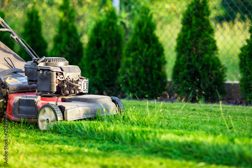 obraz PCV Lawn mower cutting green grass