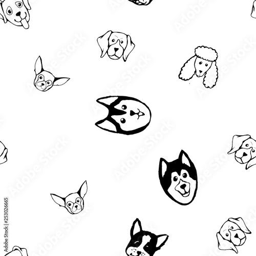 obraz PCV Seamless pattern with Dog breeds. Bulldog, Husky, Alaskan Malamute, Retriever, Doberman, Poodle, Pug, Shar Pei, Dalmatian