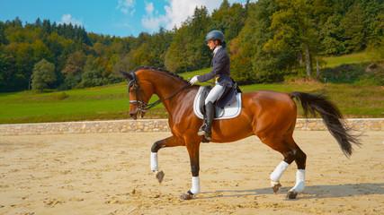 Young female English rider trotting on horseback around the manege on sunny day