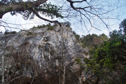 vista nel parco del monte Cucco