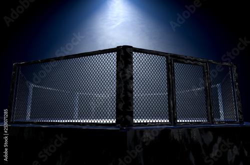 Leinwandbild Motiv MMA Cage Night