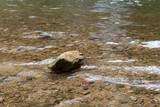 Stein im stillen Wasser