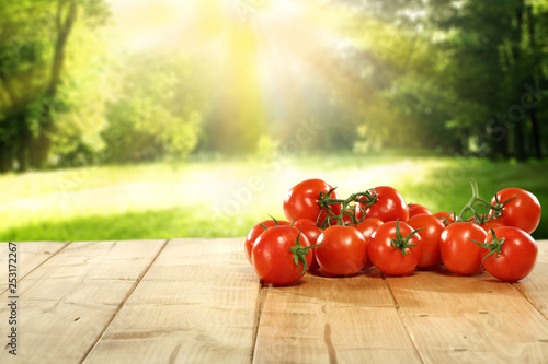 free space on table and red vegetables of tomato - 253172267