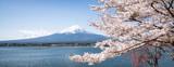 Berg Fuji zur Kirschblüte im Frühling, Kawaguchiko, Yamanashi Präfektur, Japan
