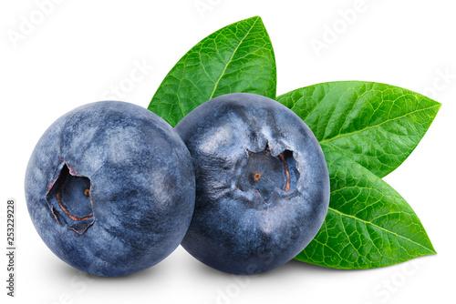 Leinwandbild Motiv Blueberry isolated Clipping Path