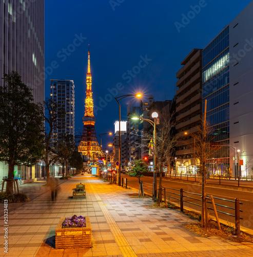 obraz PCV Tokyo Tower sunset