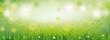Frühling Banner mit Bokeh und grünem Gras