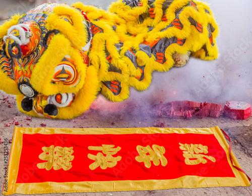 Nouvel an chinois, danse du lion et explosions de pétards