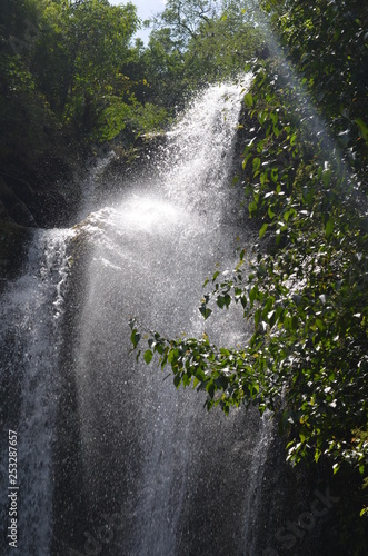 waterfall in the forest - 253287657