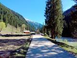 Fototapeta Natura - road in the mountains © Muhammad Usama