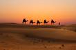 Leinwandbild Motiv Silhouette of camel caravan with people on dessert at sunset