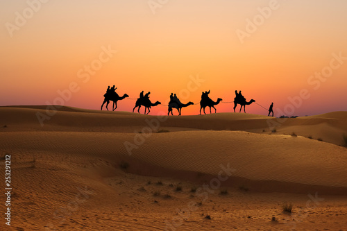 Silhouette of camel caravan with people on dessert at sunset