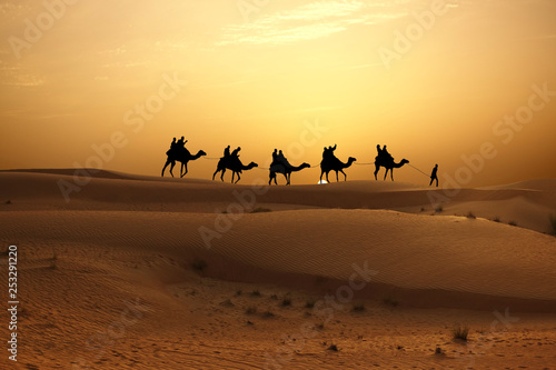 Leinwanddruck Bild Sunset in desert with camel caravan silhouette on sand dunes